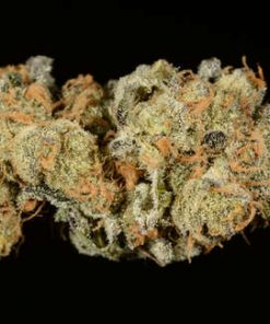 Buy Girl Scout Cookies Weed Online, girl scout cookies weed for sale, order girl scout cookies online, where to buy girl scout cookies, girl scout cookies