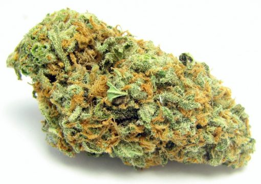 Buy Green Crack Weed Online, where to buy green crack weed in USA, green crack weed for sale, green crack strain, buy green crack strain, weed for sale